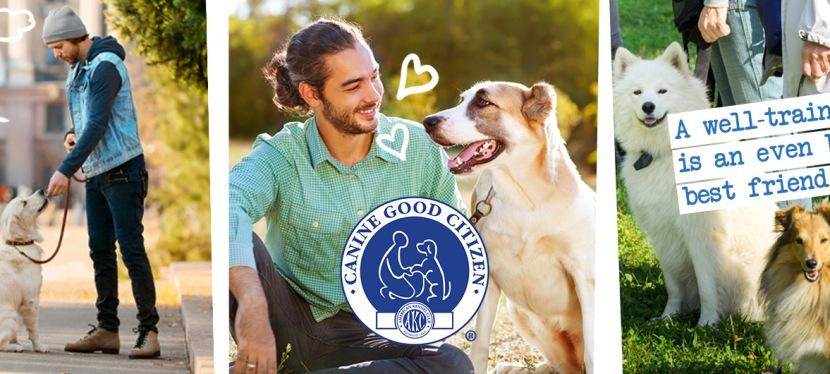 Canine Good CitizenTesting